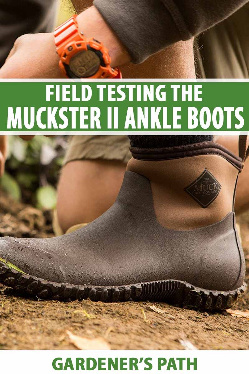 Muckster II Ankle Muck Boots Review | A Gardener's Path