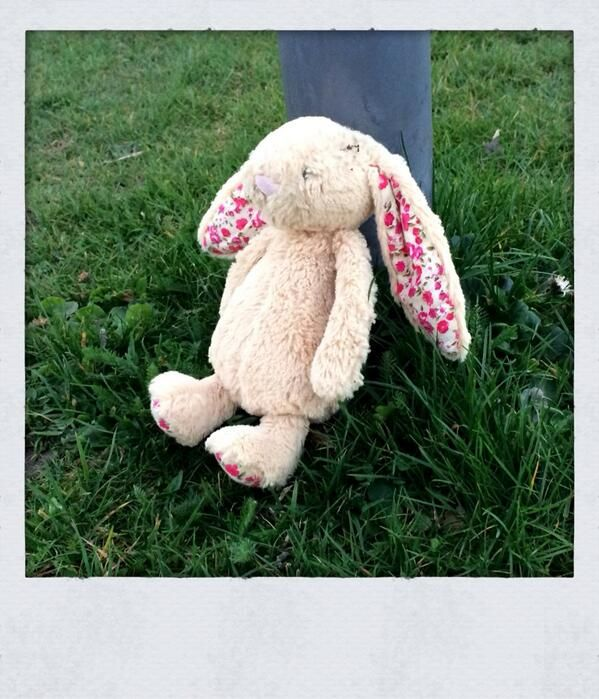 This Jellycat Bunny Was Spotter On Castle Hill Near The Cricket Club By Haresfoot Brewery Berkhamsted Anyone Lost Her J Jellycat Bunny Pet Toys Cuddly Toy