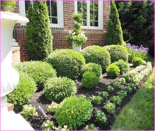 Landscaping Ideas For Front Of House With Shrubs