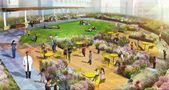Boston Childrens Hospital Rooftop Healing Garden | Mikyoung Kim Design  Land#gardenia #gardena #landscapedesign #wooddesign #characterdesign #gardenlife #gardenparty #gardens #gardener #designboom #nailist #nailsonfleek #nailinspiration #designed #designdesobrancelhas