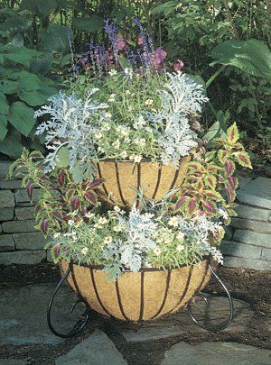Gardening Two Tiered Planter Classic With Liners View 400 x 300