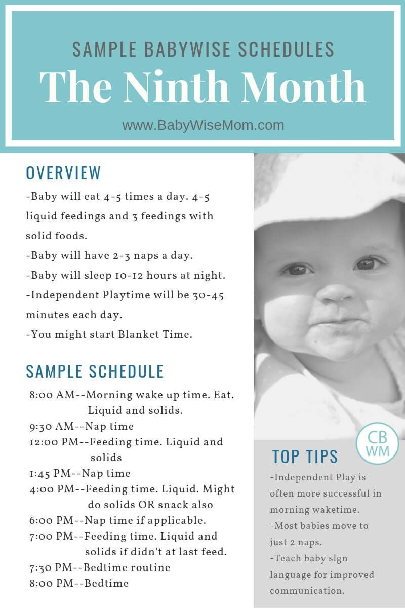 Sample Schedules For An 8 Month Old Using The Babywise Method