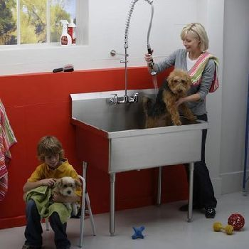 Elkay Pla8136 Pursuit Free Standing Utility Sink