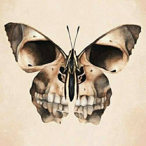 Butterfly, Skull, Weird, Different, Cool, Crazy, Skull, Beauty, Day of The Dead, Dia De Los Muertos