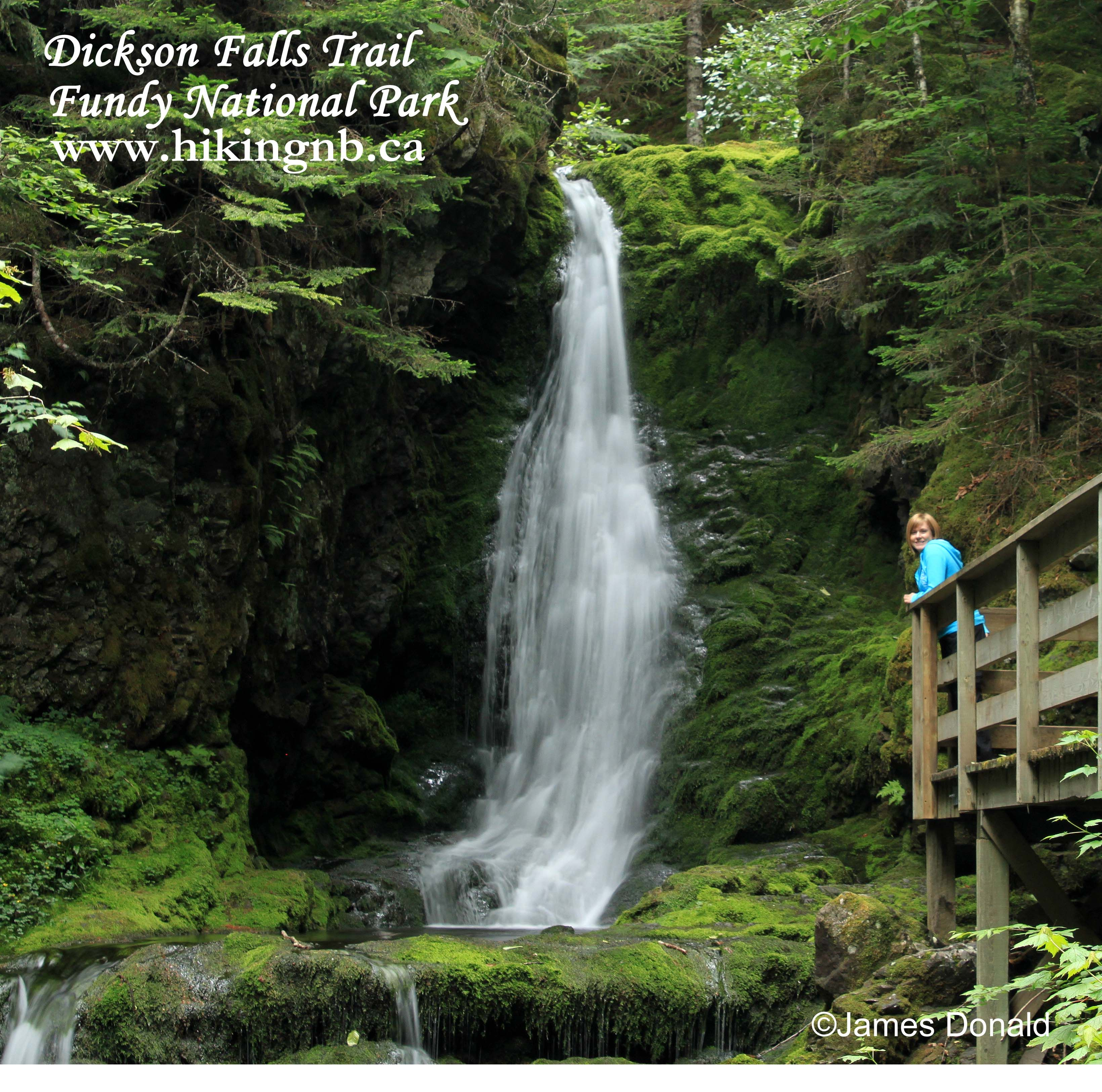 Nova Scotia Hiking Trails: Dickson Falls Trail At Fundy National Park