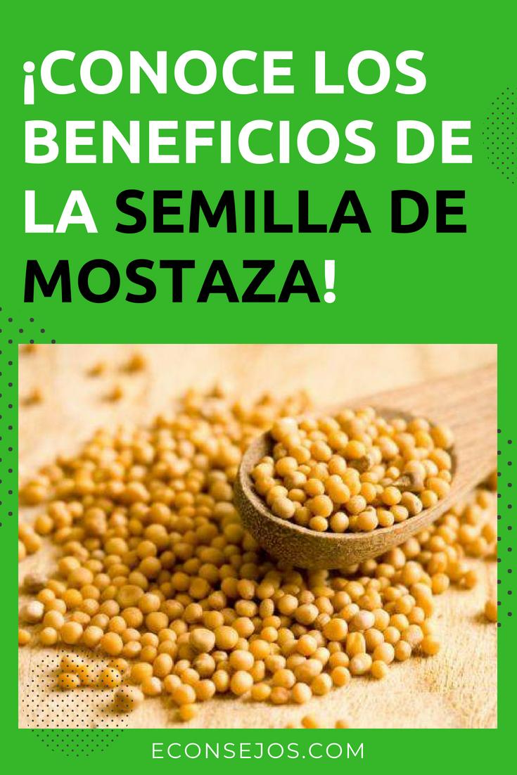 Como tomar la semilla de mostaza para adelgazar