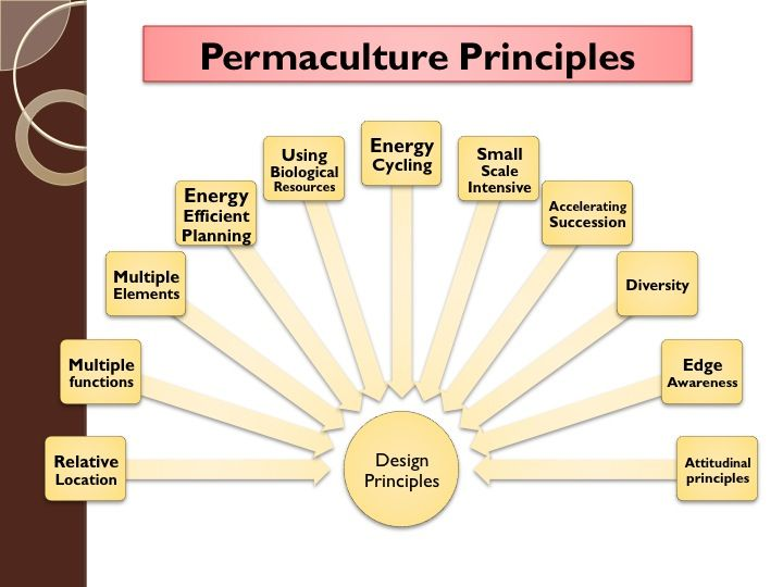Chapter 2 Permaculture Design Principles Permaculture Design Course Handbook Permaculture Design Course Permaculture Principles Permaculture
