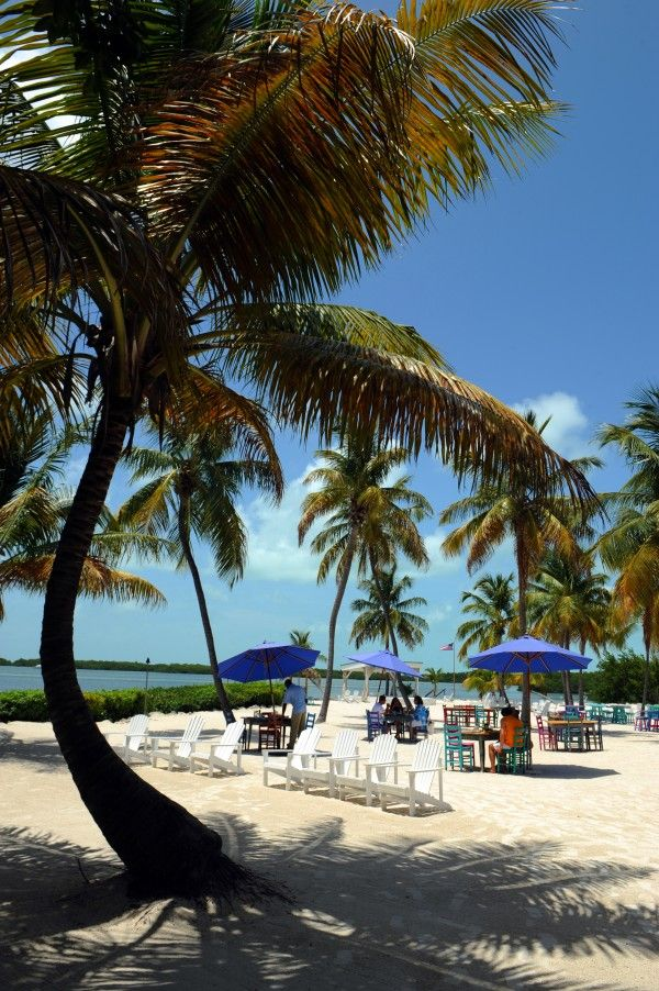 Best Places To Live In Florida Best Places To Live Florida Travel Visit Florida