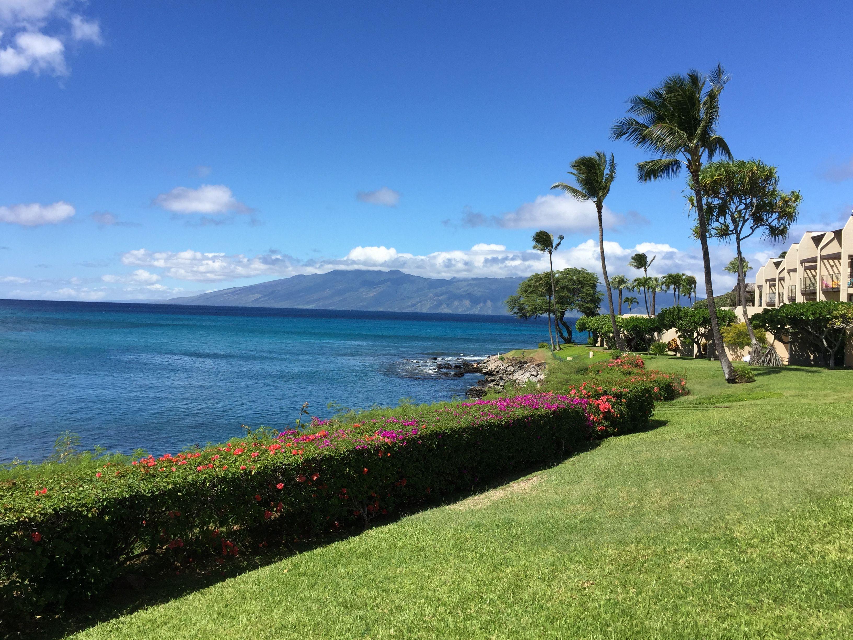 70a1be0f519aa61ca352cde63036f3aa - The Gardens At West Maui Pictures