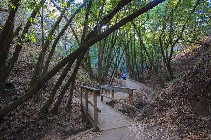 The PGu0026E Trail In Rancho San Antonio Open Space Preserve Is One Of The Most  Popular Trails On The San Francisco Peninsula.