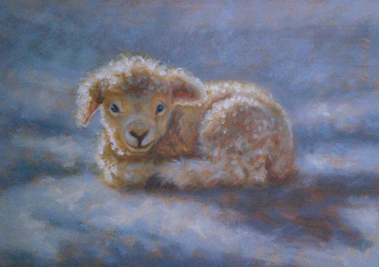 животные овцы рисунок красками носит