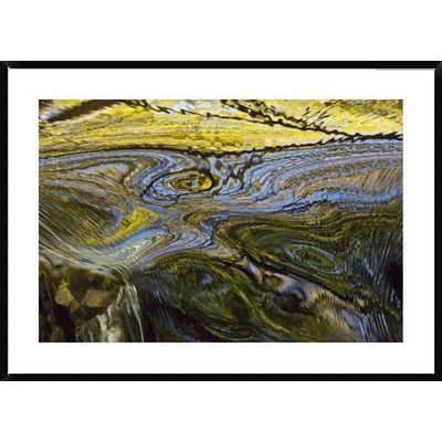 Global Gallery Autumn Patterns in Waterfall, Canterbury, New Zealand by Colin Monteath Framed Photographic Print Size: