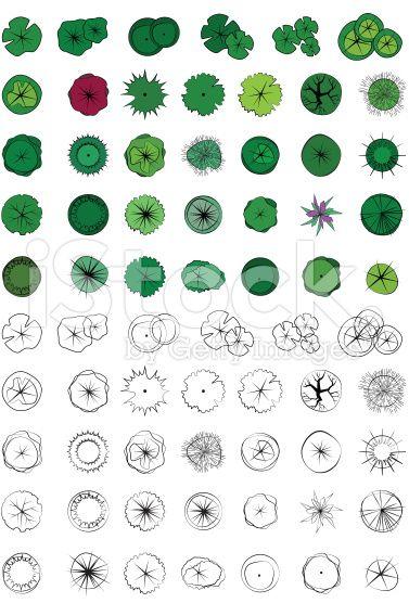 Landscape design symbols trees top view vector colour for Draw site plan free