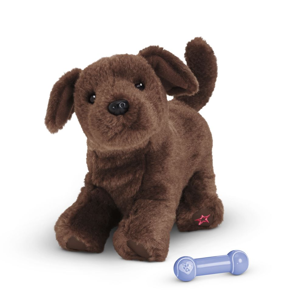 American girl doll chocolate lab puppy come and see us for fun items