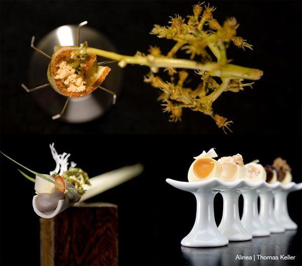 Cocina Molecular Ferran Adria El Bulli Amazing Food