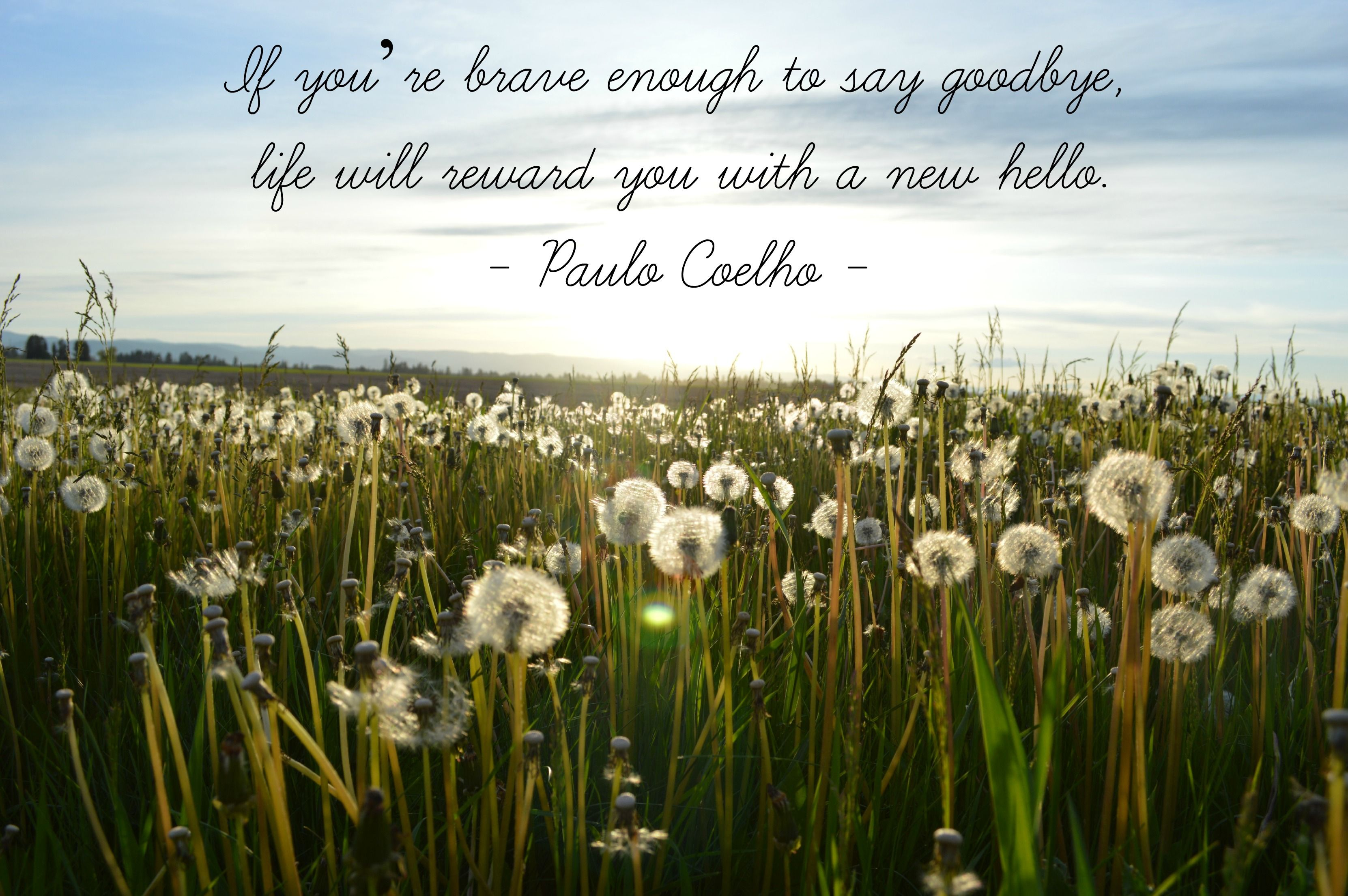 Quotes About Life Lessons And Moving On Dandelions Quote Brave Enough Say Goodbye Paulo Coelho Job Ends