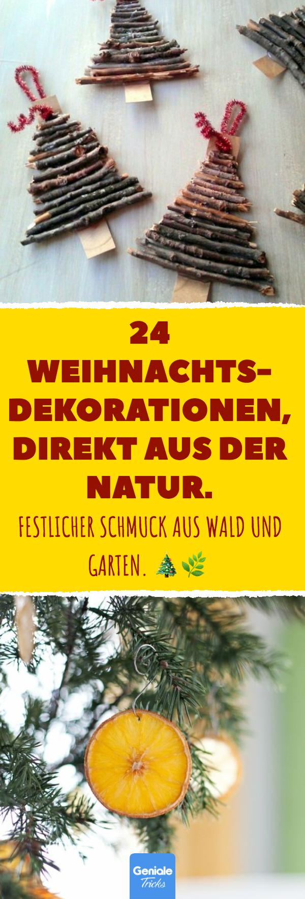 24 Weihnachtsdekorationen, direkt aus der Natur.