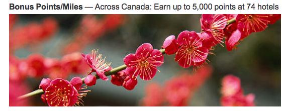 Rewards Canada: Earn 1,000 Bonus Marriott Rewards Points per night at over 70 locations in Canada