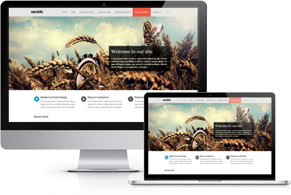 Weebly Website Examples | Weebly Discussions | Pinterest