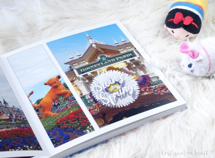 Disneyland Paris Dans Mon Livre Photo C Est Quoi Ce Bruit
