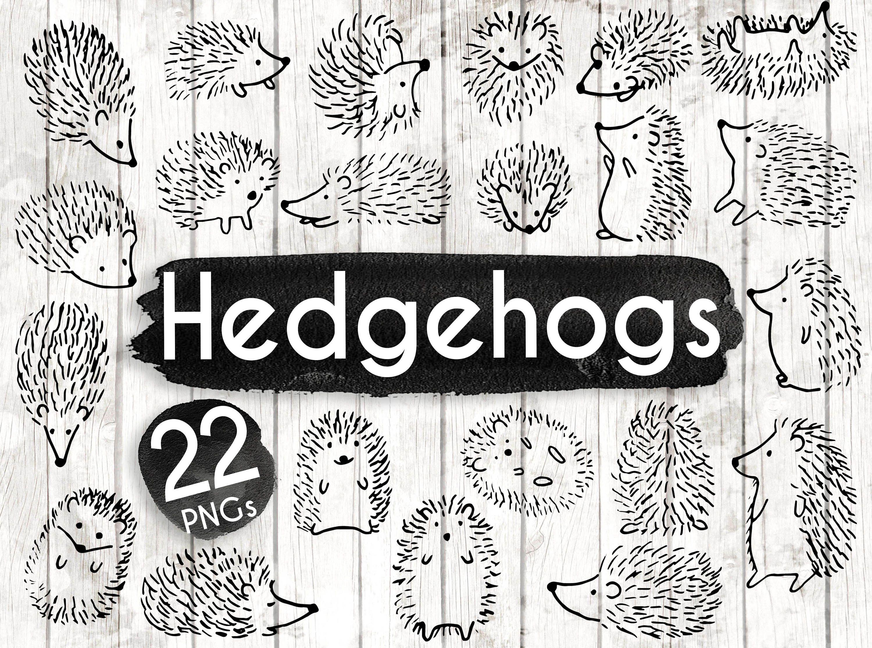Hedgehog Clipart 22 Hedgehog Doodle Clip Art Hedgehog Card Woodland Clip Art Woodland Invitation Hedgehog Png 91 Clip Art Hedgehog Art Woodland Invitations