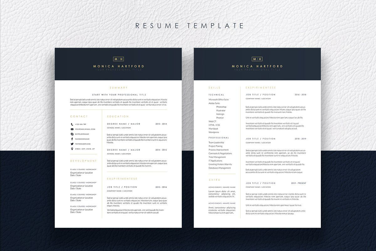 Resume Examples 2 Pages , examples pages resume