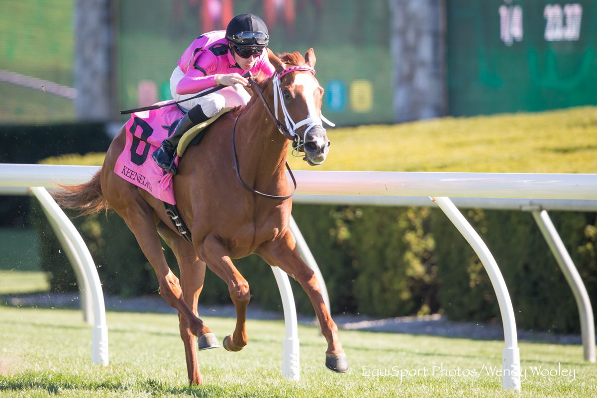 Catch A Glimpse Catches Fifth Straight Win With Appalachian Triumph Horse Racing News Paulick Report Racing News Racing Appalachian