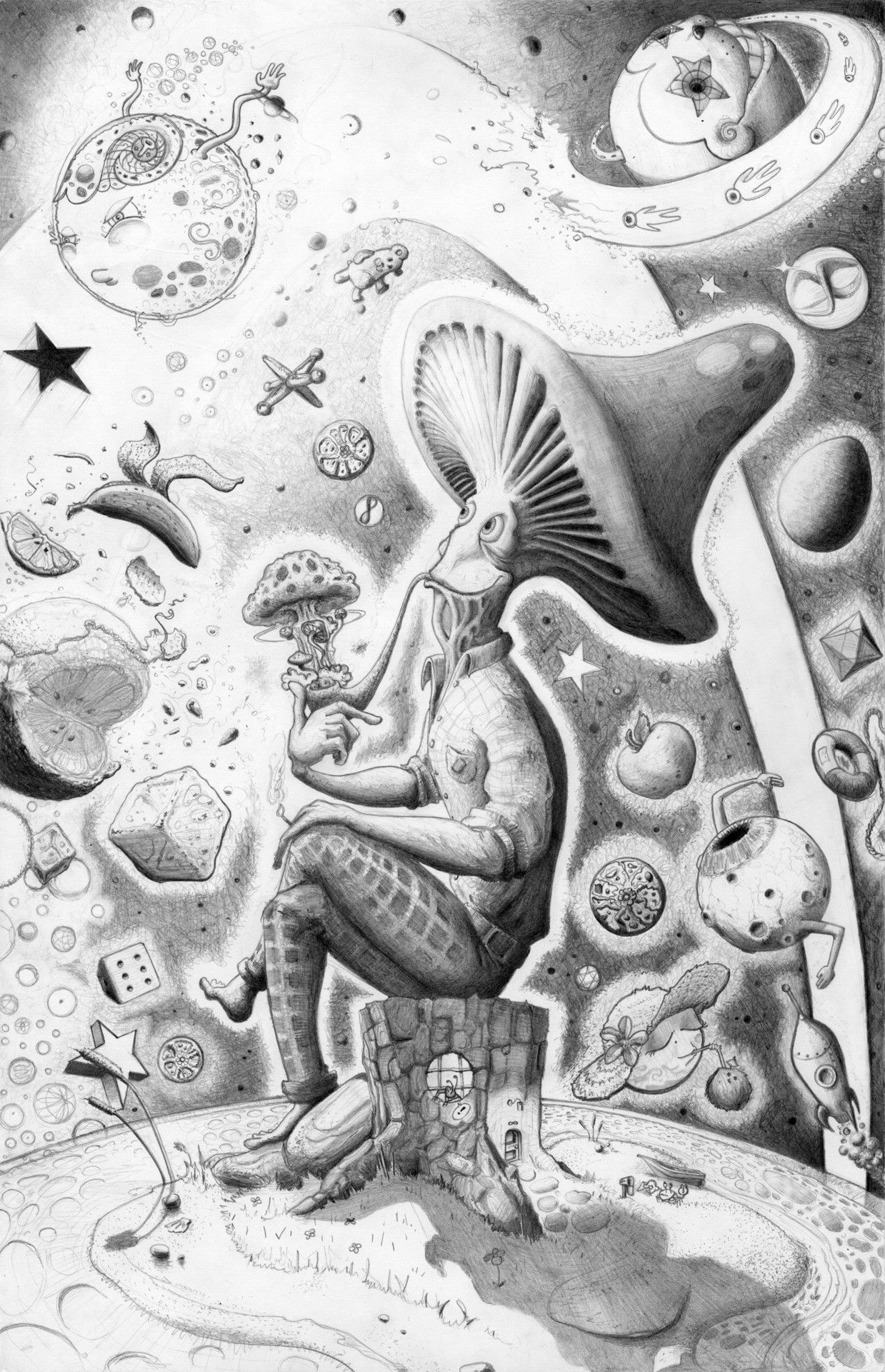 Amazing Mushroom Drawing