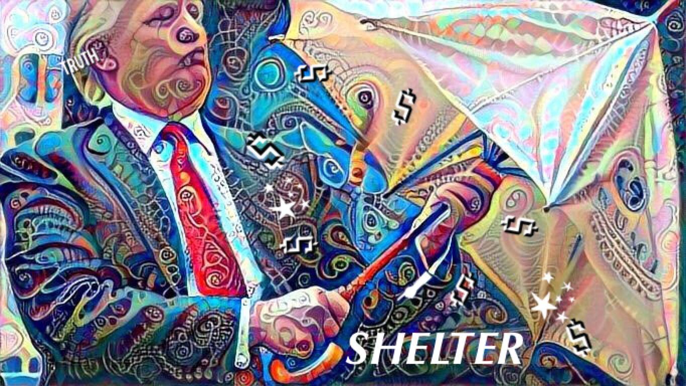 Shelter Trump Art Political Propaganda Portrait Popart