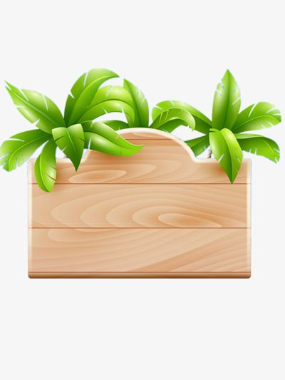 Coconut Tree Nameplate Png And Clipart Clip Art Borders Moana Clip Art