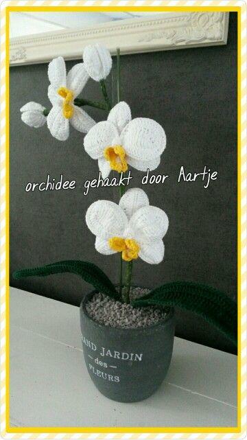 Orchidee Gehaakt Patroon Mary J Handmade Haken Pinterest