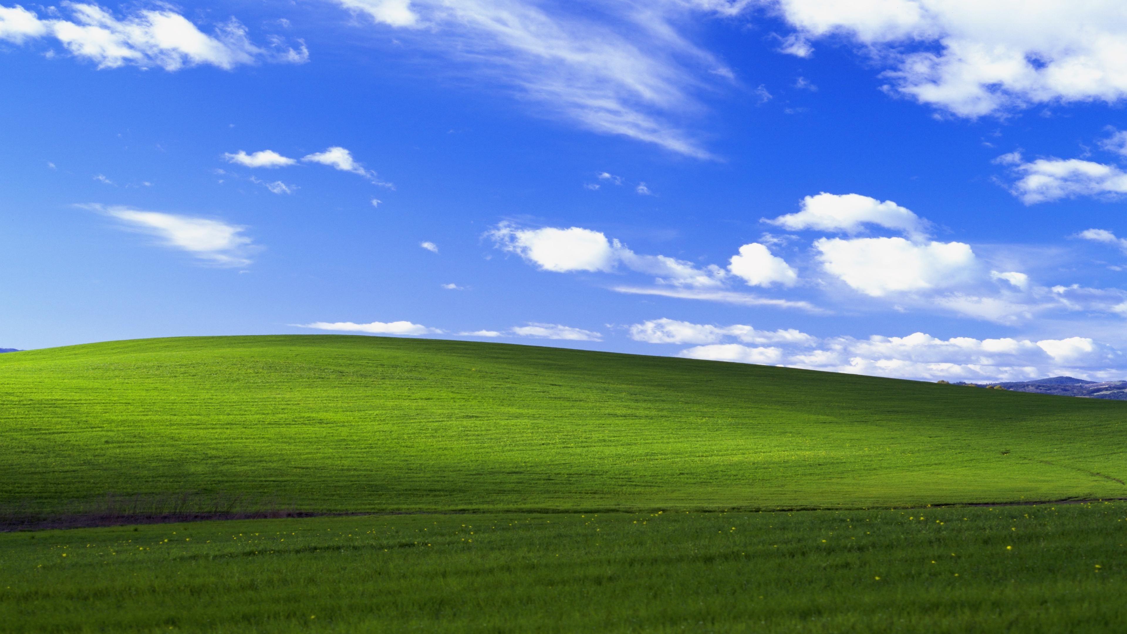 windows xp bliss 4k Desktop