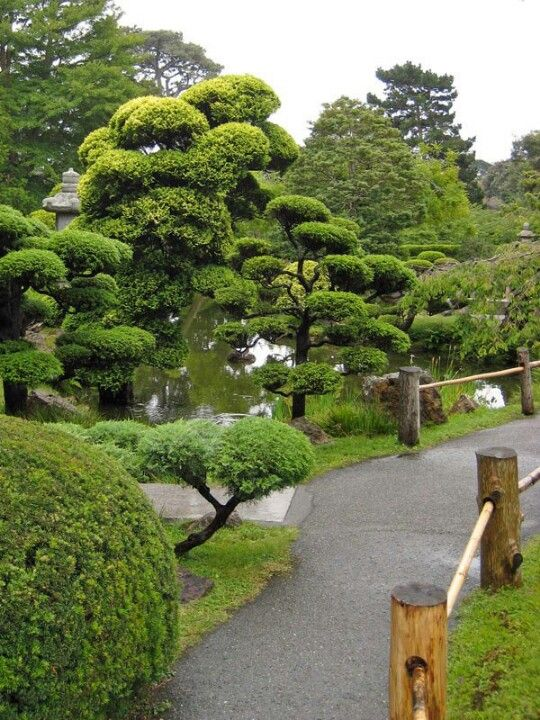 Gg Japanese Tea Garden Con Imagenes Jardineria Jardin Japones