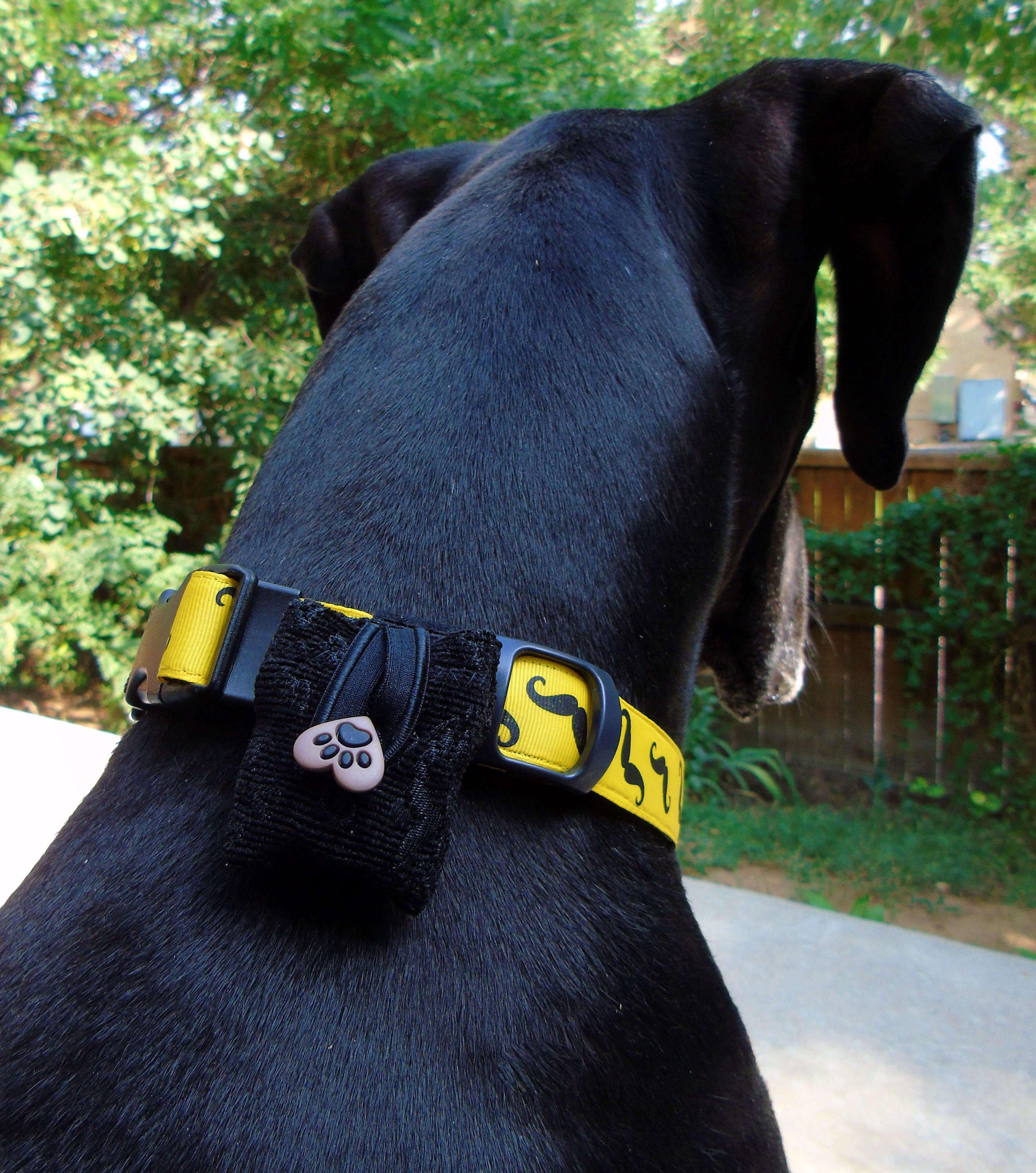 Wedding Ring Pouch Dog Ring Bearer Bag Fits On Collar Harness Or