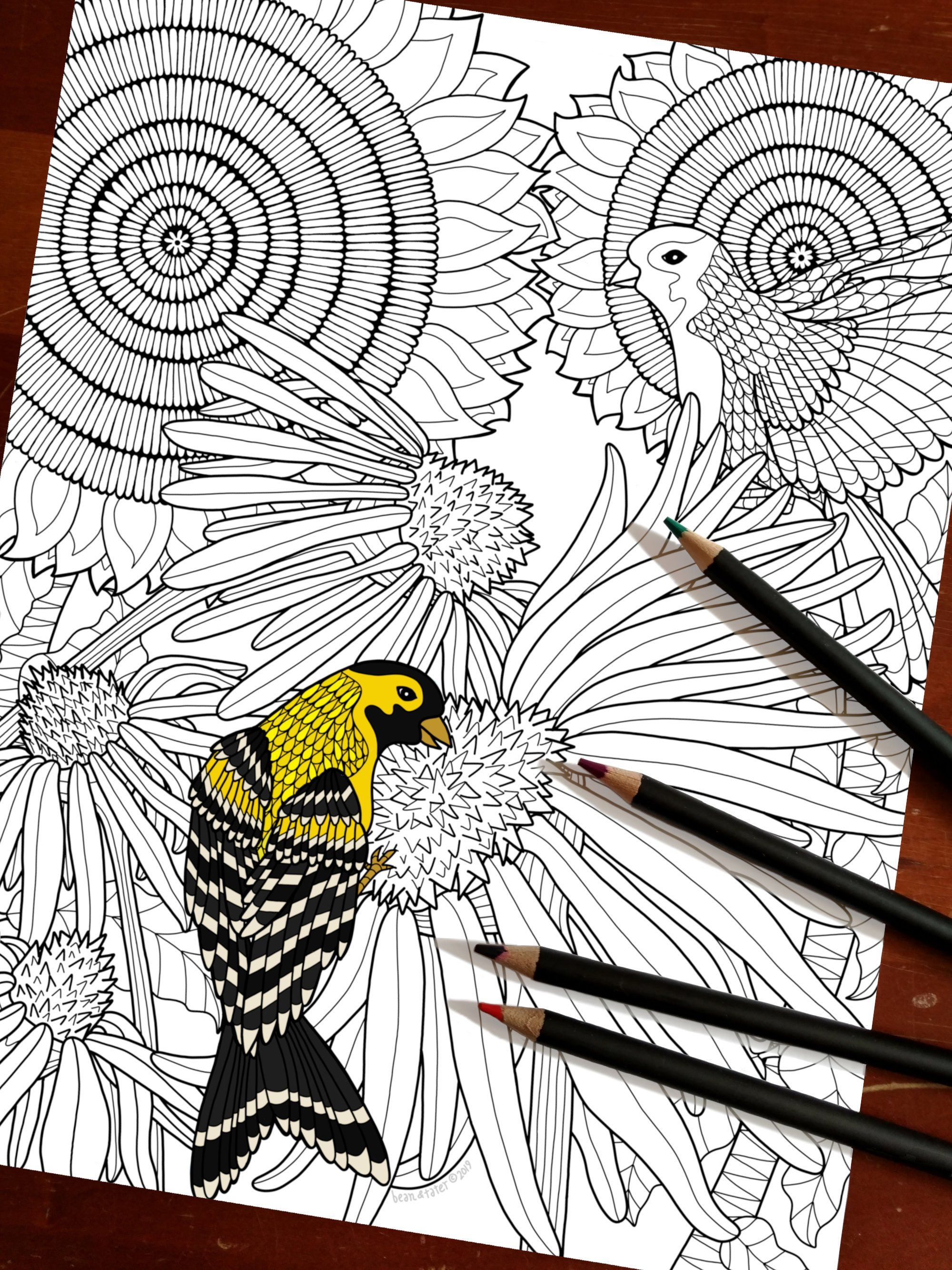 Goldfinch And Sunflowers Downloadable Coloring Page Instant