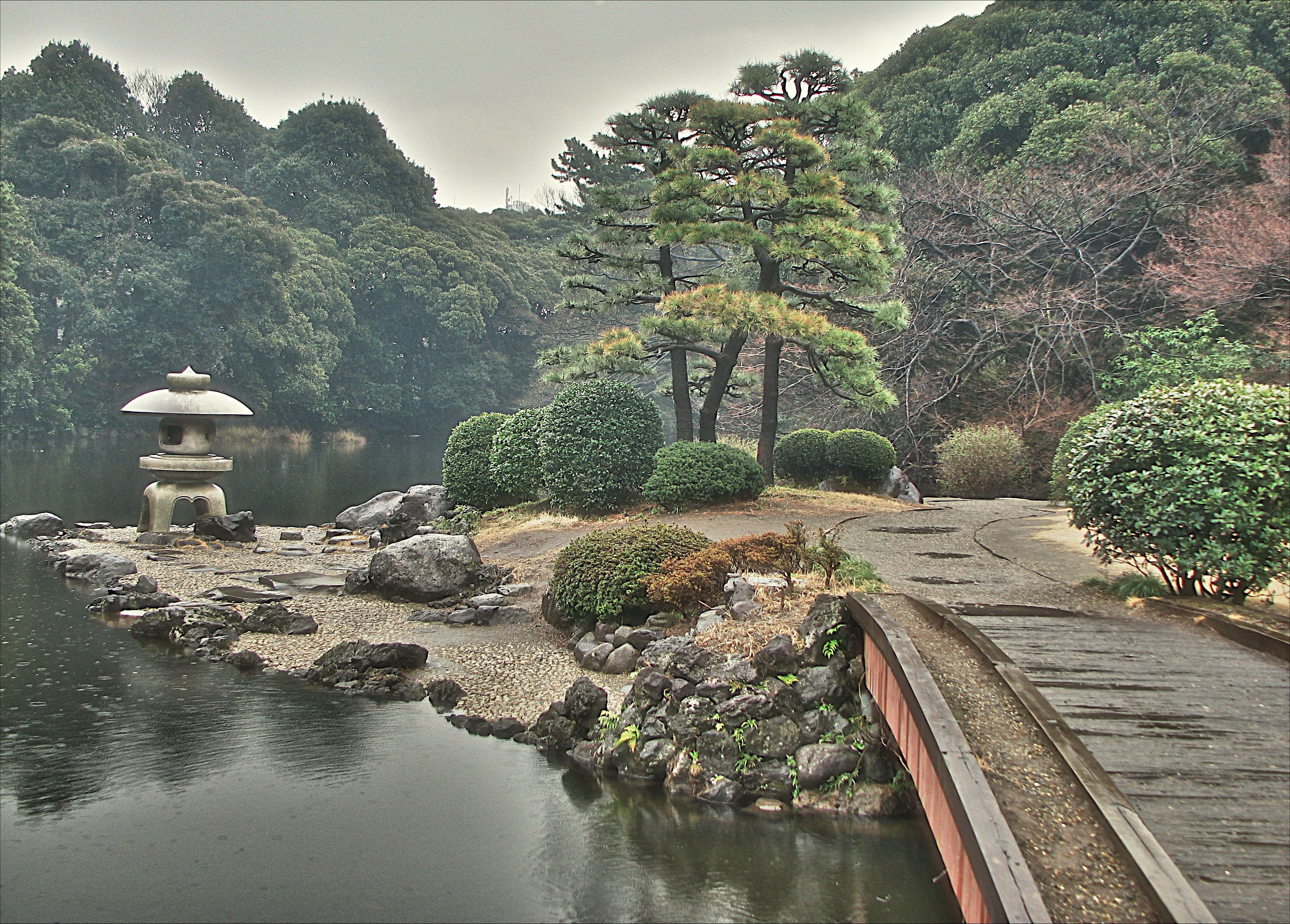Traditional japanese garden at shinjuku goyen national for Traditional japanese garden