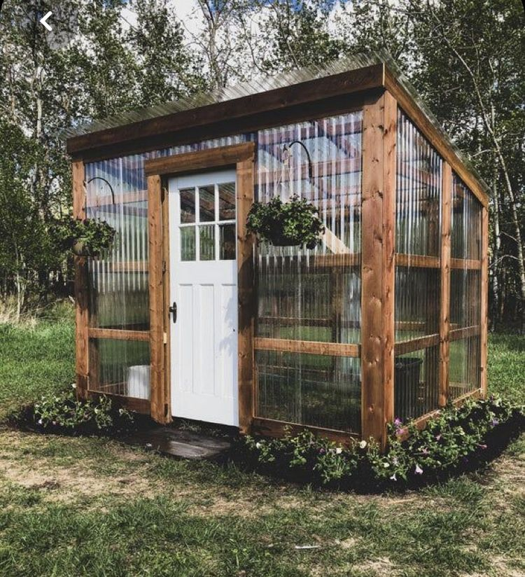 Pin By Holly Hebel On She Sheds Or Pool House In 2020 Backyard Greenhouse Lean To Greenhouse Backyard