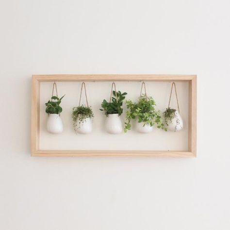 Photo of Indoor herb garden in a wooden frame Wall holder Planter France Plant gift Hanging planters fr
