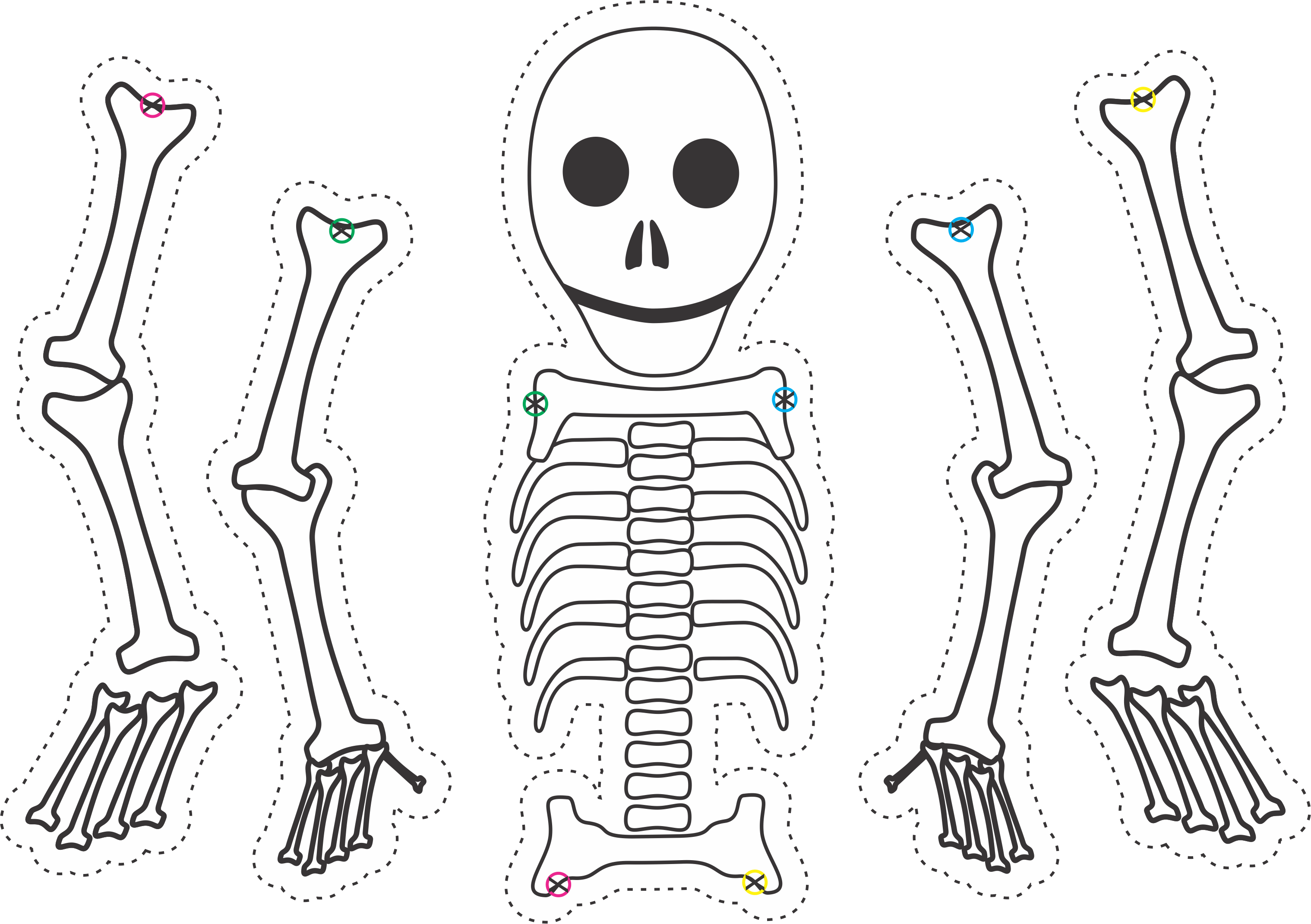 Dry Bones Skeleton Puppet Template For Ezekiel