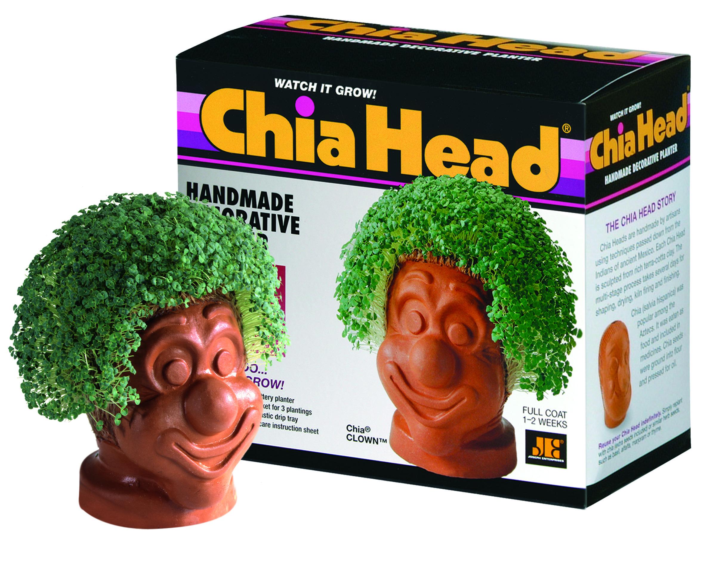 Chia Clown Chia Pet Handmade Decorations Decorative Planters
