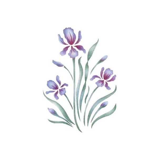 Stencils Accent Royal Iris Stencilease Com Liked On Polyvore Flower Stencils Printables Floral Stencil Flower Stencil