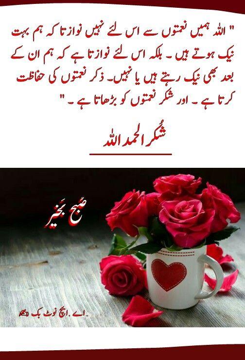 السلام عليكم ورحمة الله وبركاته ص بح ب خیر اے ایچ ن وٹ بک Good Morning Flowers Good Morning Messages Good Morning Quotes