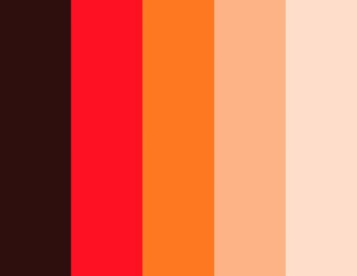 Color Me Curious: Photo