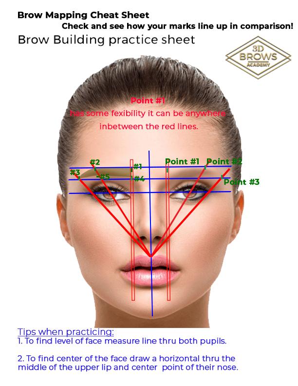 Mapping Cheatsheet Full 3d Brows Classroom Eyebrow Makeup Products Permanent Makeup Eyebrows Eyebrow Makeup