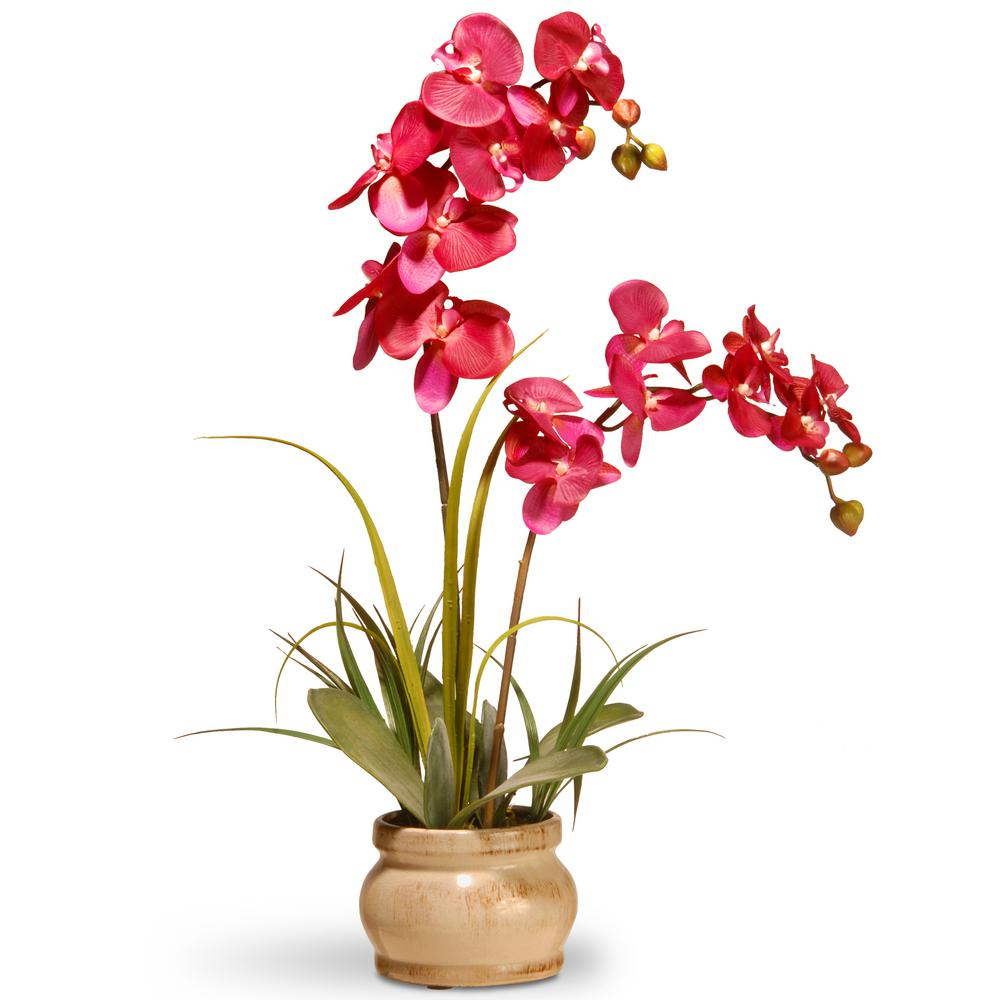 National Tree Company 24 In Pink Orchid In Ceramic Pot In 2020 Artificial Orchids Purple Orchids Flower Pots
