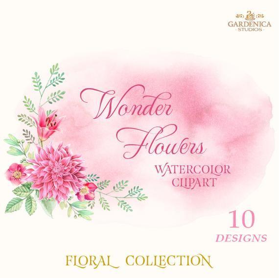 Photo of Clipart di fiori vintage, clipart dell'acquerello rustico, elementi floreali, fiori digitali, Dalia, rosa, mazzi di fiori Clipart Png Graphics Set File