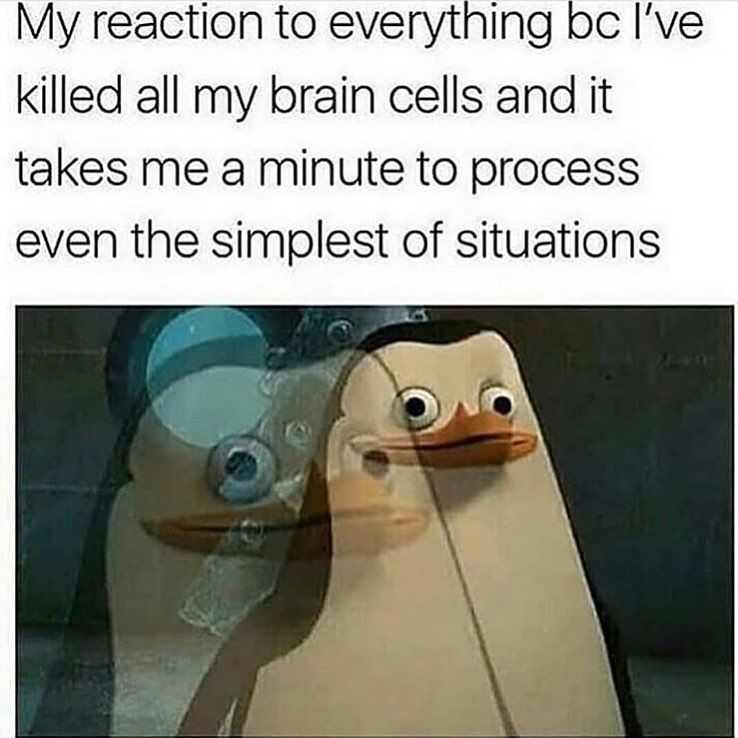 Same But There S Still All Of Finals To Do Reeeeeeeeeee Soup Follow Clean Memes For The Soul For More Memes Sarcastic Funny Relatable Memes Funny Memes