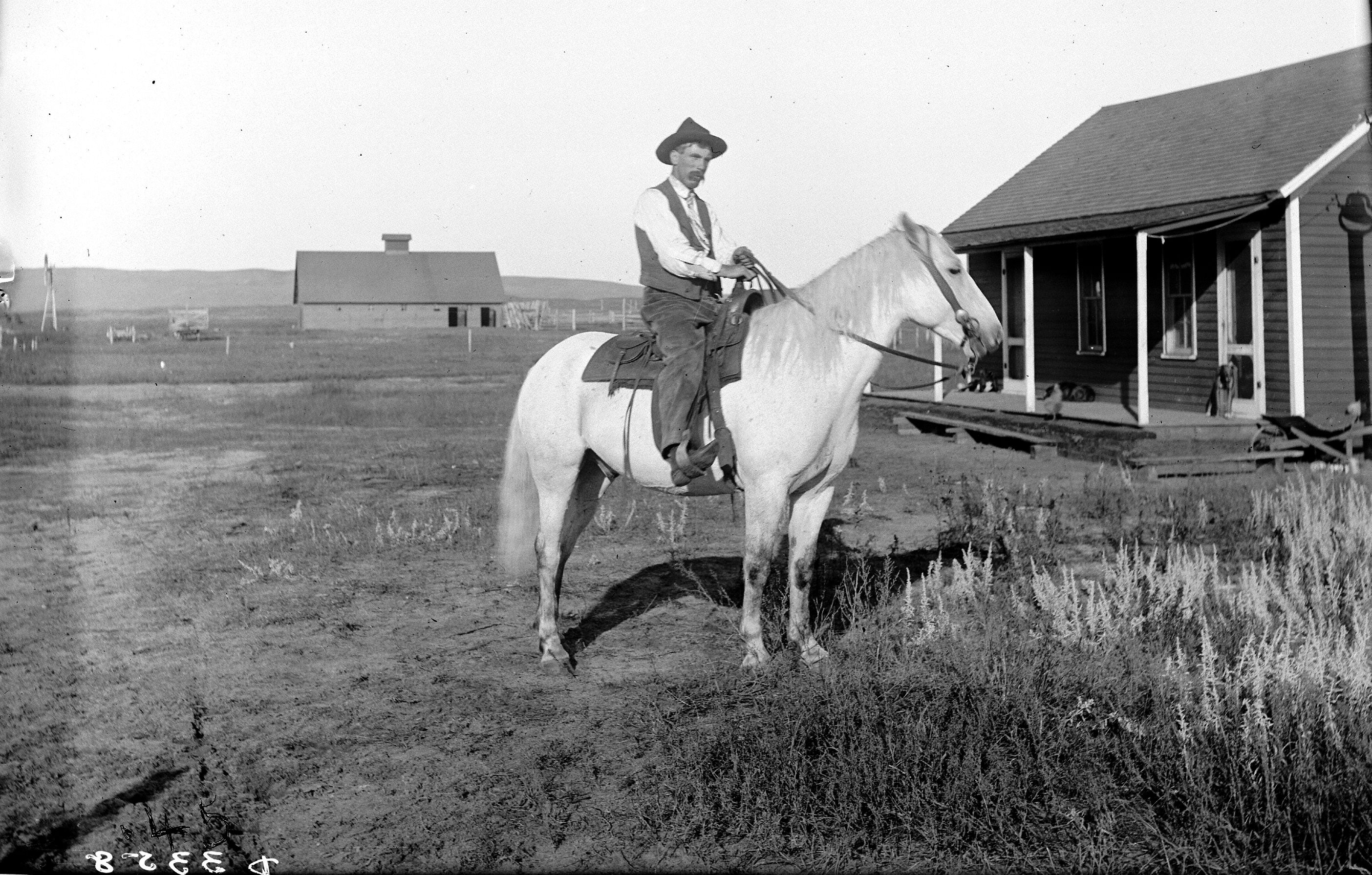 Cowboy On Carver Ranch Near Pullman, Nebraska Solomon D Butcher