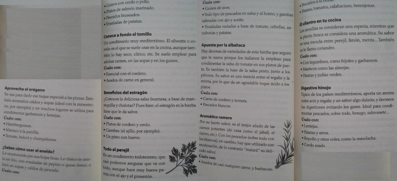 ESPECIAS: orégano, eneldo, tomillo, estragón, perejil, albahaca, romero, cilantro, hinojo.