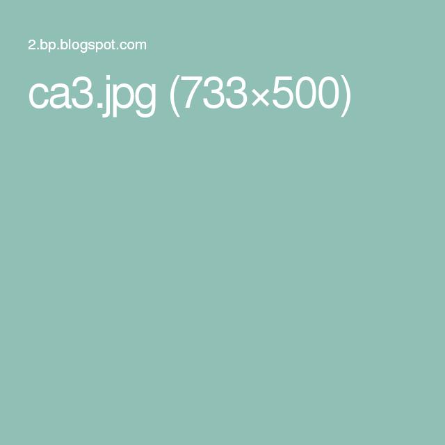 ca3.jpg (733×500)